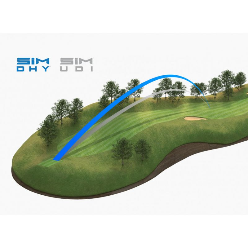 TAYLORMADE - Hybride SIM DHY 2021